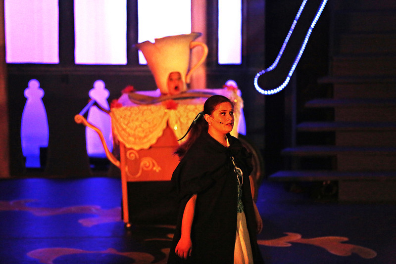 Debbie Markham Photo-Closing Performance-Beauty and the Beast-CUHS 2013-003.jpg