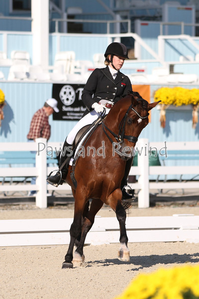 "FEI Young Rider Freestyle NAJYRC & USEF National Young Adult ""Brentina Cup"" USEF Qual"