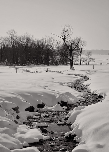 226 snow - frozen creek monotone(p, site).jpg