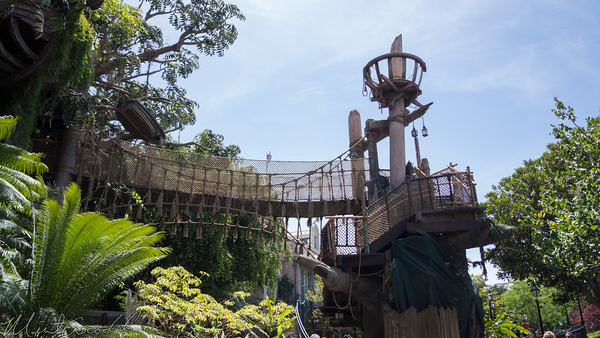 Disneyland Resort, Disneyland, Adventureland, Tarzan, Tree, House