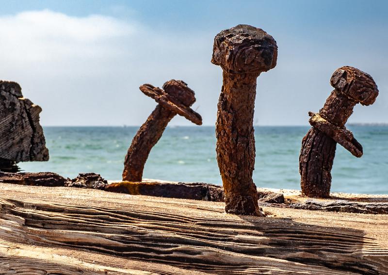 04_06_26 playa del rey072-577.jpg