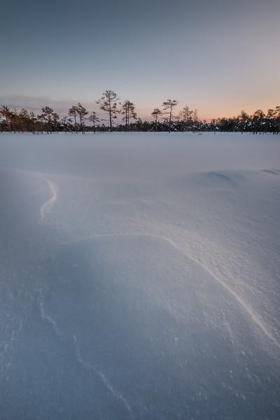 SNOW_LINES-ART22160-Edit.jpg