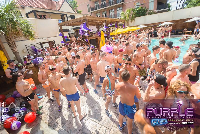 2014-05-10_purple06_504-3255129033-O.jpg