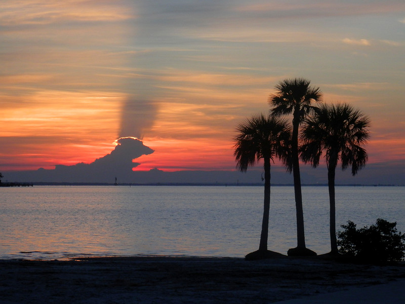 6_15_19 Sunrise Tampa Bay.jpg