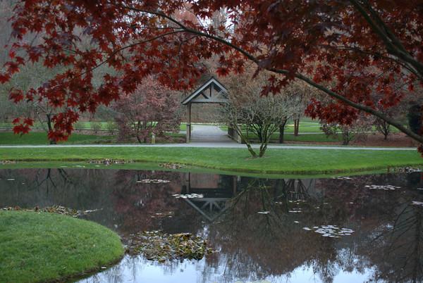 2013/11/16-2 - Gibbs Gardens