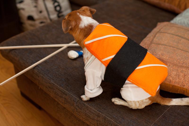 Dog-sushi-halloween-22.jpg