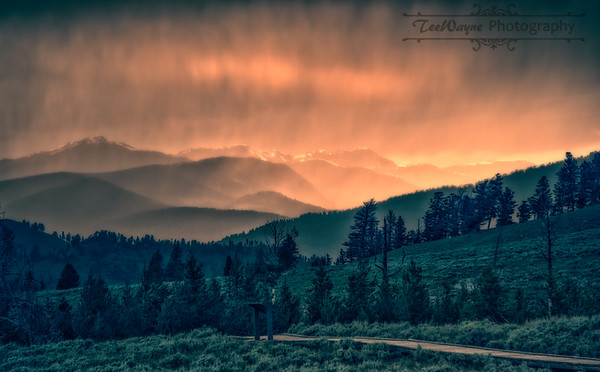 Yellowstone Geysers & Landscape