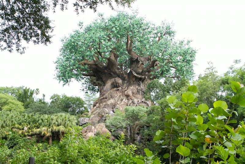 DisneyDay1_-38.jpg