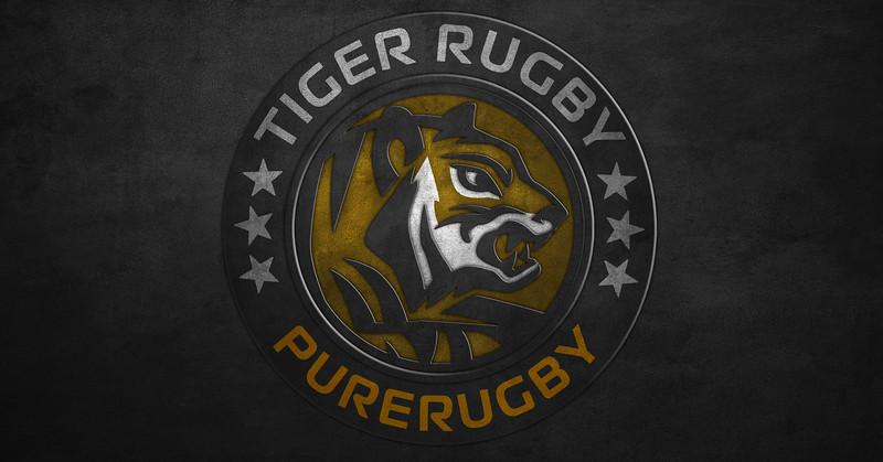Tiger T Gray.jpg