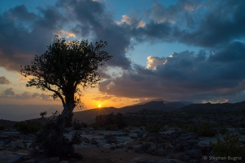 Jebel Akhdar-0773.jpg