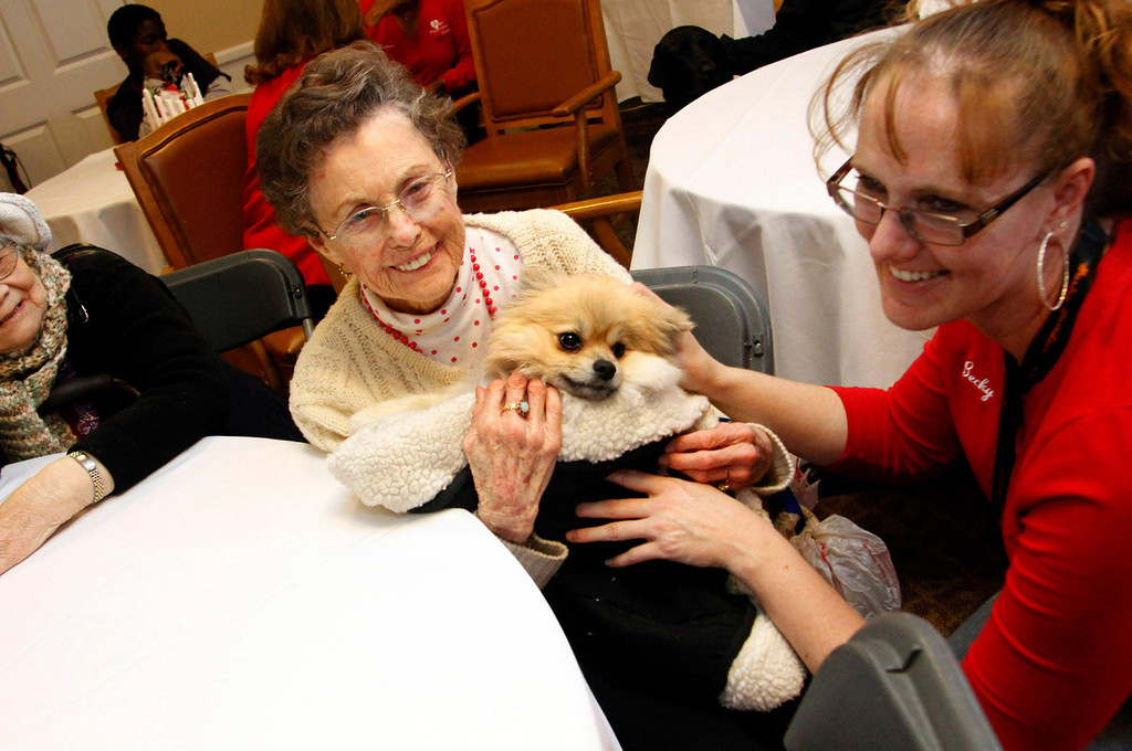 """. Shirley Laher, 84, holds \"""" Black Beard,\"""" during the Pet Prescription\'s 10th Anniversary Open House, at Whitten Heights in La Habra, Saturday, March 9, 2013. The organization uses therapy dogs to heal emotional and medical problems, and to hang out with seniors at retirement homes. (Correspondent Photo by James Carbone/SWCITY)"""