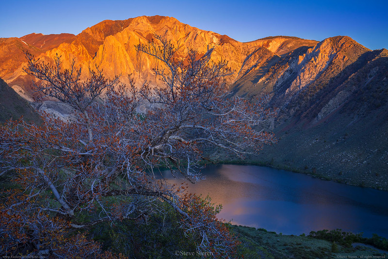 Convict_Lake_Red_Tree_Laurel_Mountain_Eastern_Sierra_DSC1707.jpg
