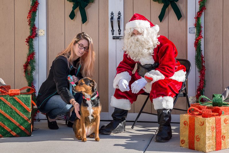 Pet Pictures With Santa-74.jpg
