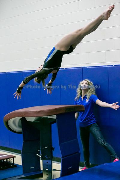 Gymnastics vs Wayzata 12--5-19