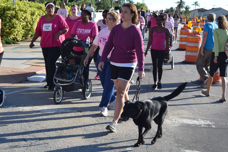 2014 Making Strides Against Breast Cancer in Daytona Beach (197).JPG