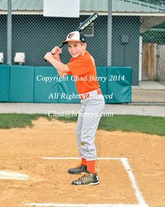 Orioles Baseball 2014