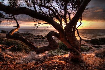 Sunset Cliffs Park, Ocean Beach, October 17, 2014