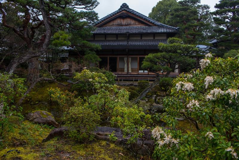 Nara Day 5 (133 of 374).jpg