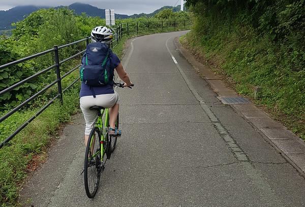Ikuchishima