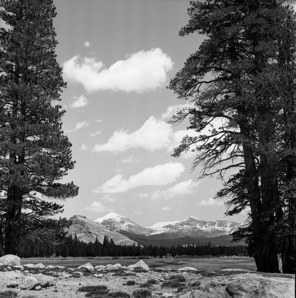 Yosemite_052018002.jpg
