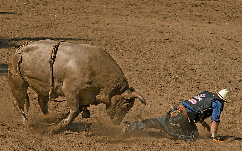 COOMBS RODEO-2009-3760A.jpg