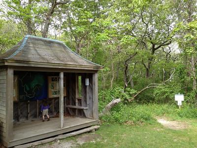 Memorial Day 2012: Cedar Tree Neck Sanctuary