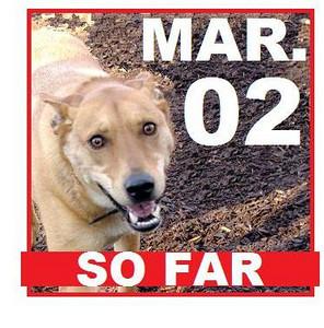 02 MARCH (so far)