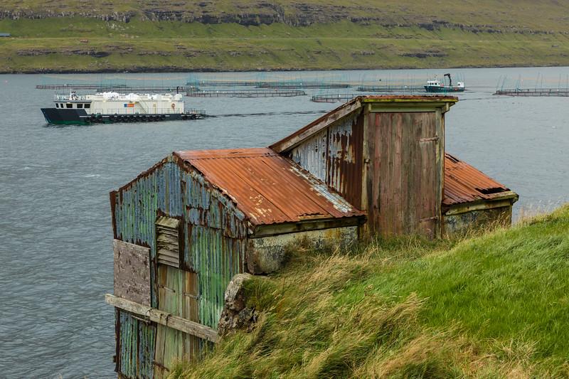 Faroes_5D4-1765.jpg