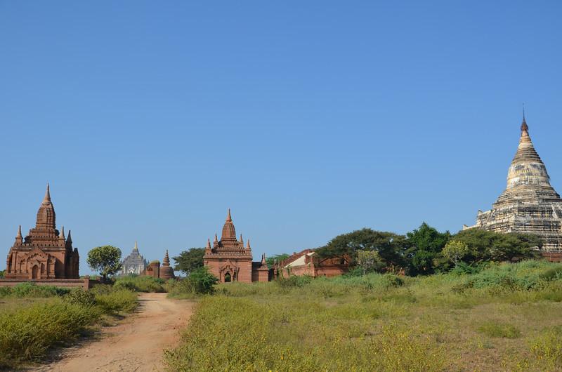 DSC_4008-road-through-temples.JPG