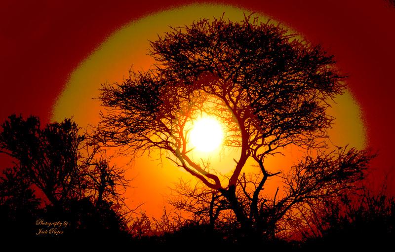 Sun Light levels- Africa .jpg