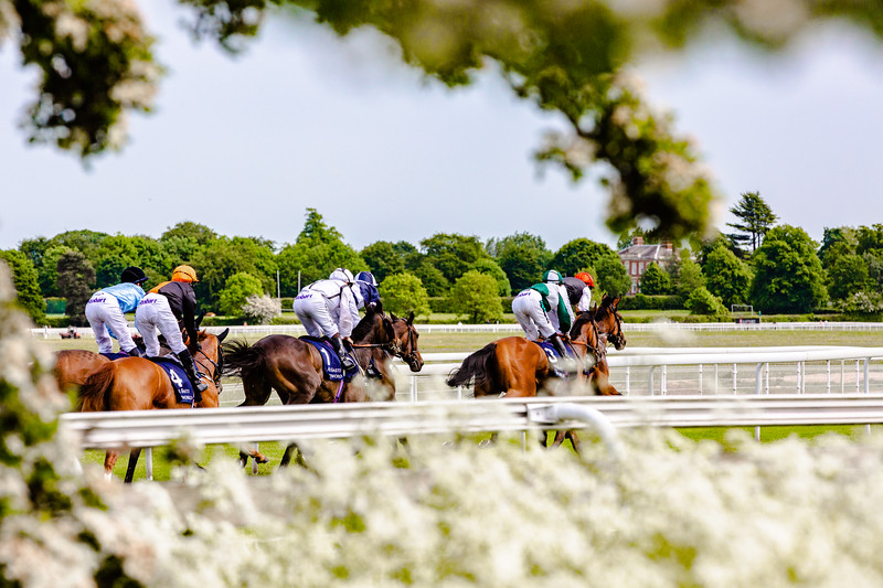 York Racecourse Blossoming - Chris Kendall Photography-9126.jpg