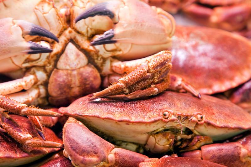 Edible crab, Boqueria market, town of Barcelona, autonomous commnunity of Catalonia, northeastern Spain