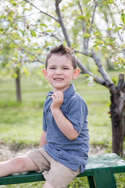 Terheggen Apple Orchard 2020