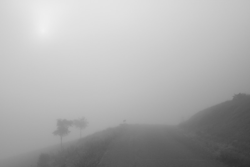 7631 Sun and Fog BW.jpg