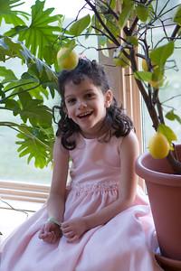 Sydney_and_the_lemon_tree