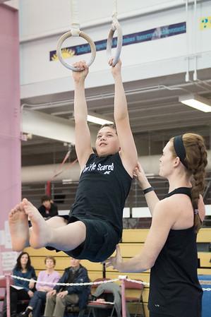 Regional Gymnastics 12-13-2015