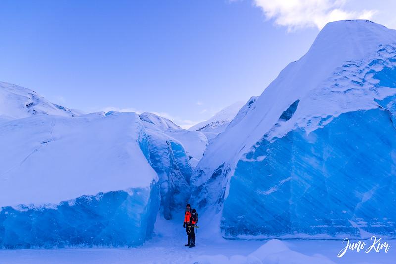 2020-01-17_Alaska Wild Guides-6102461-Juno Kim.jpg