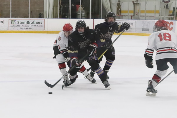 Feb. 21, 2019 Round 1 States Ice Hockey vs Hunterdon Central , 7-3 L , photos by R. DeBoer