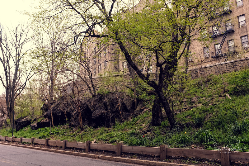 NYC61.jpg