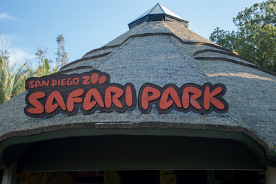 San Diego Zoo Safari Park - Oct., 2017