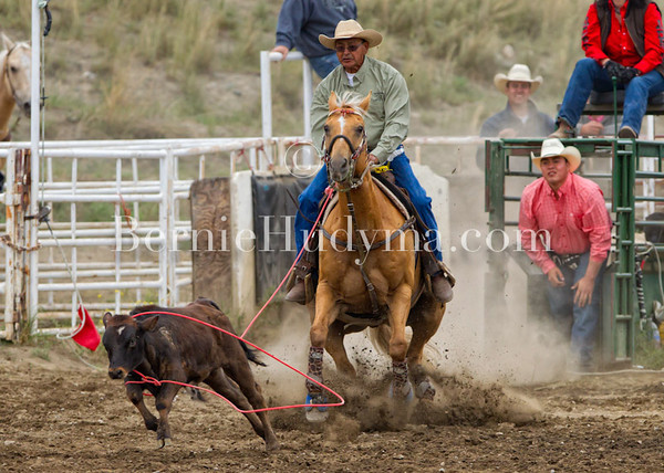 Roping & Steer Wrestling etc