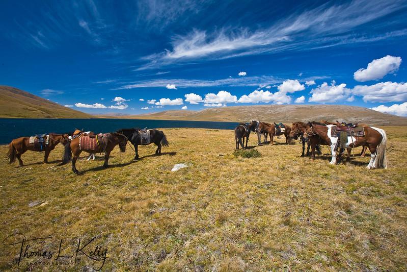 Blue Lake region. Mongolia.