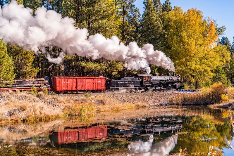 Log Train Reflections
