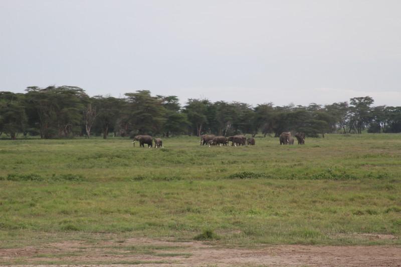 Kenya 2019 #2 271.JPG