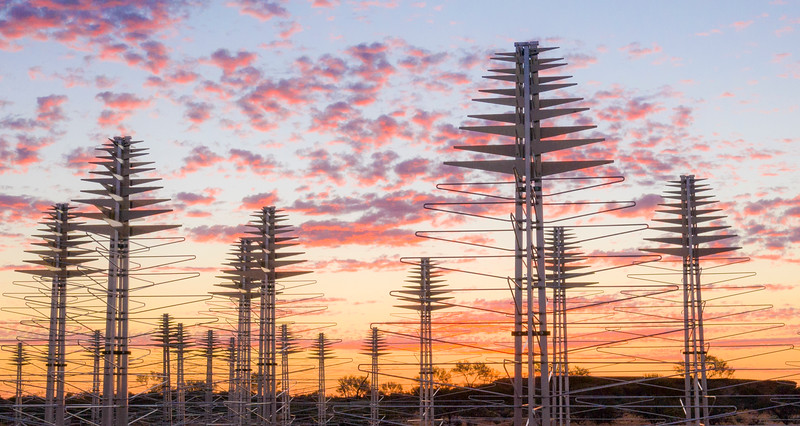 AAVS Antennas at sunset. Credit: ICRAR.