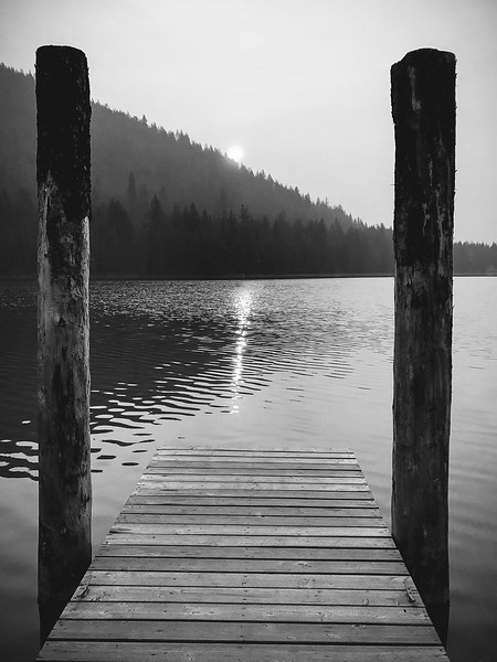 Nijole Shuberg Photography-2.jpg