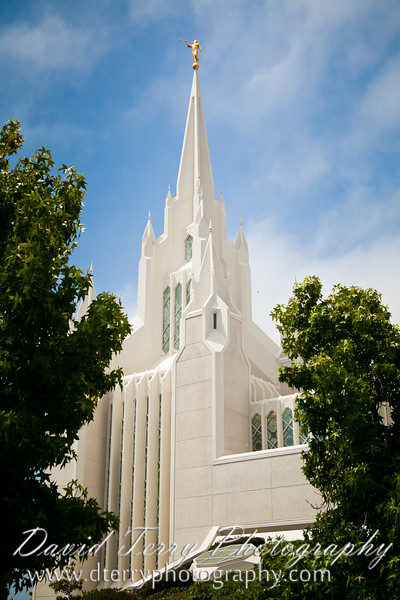 David Terry Photography - San Diego Temple