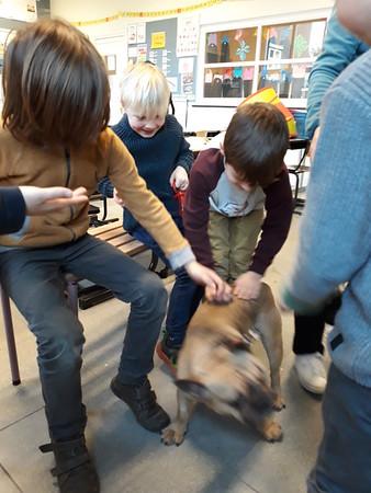 Dieren op bezoek in de klas