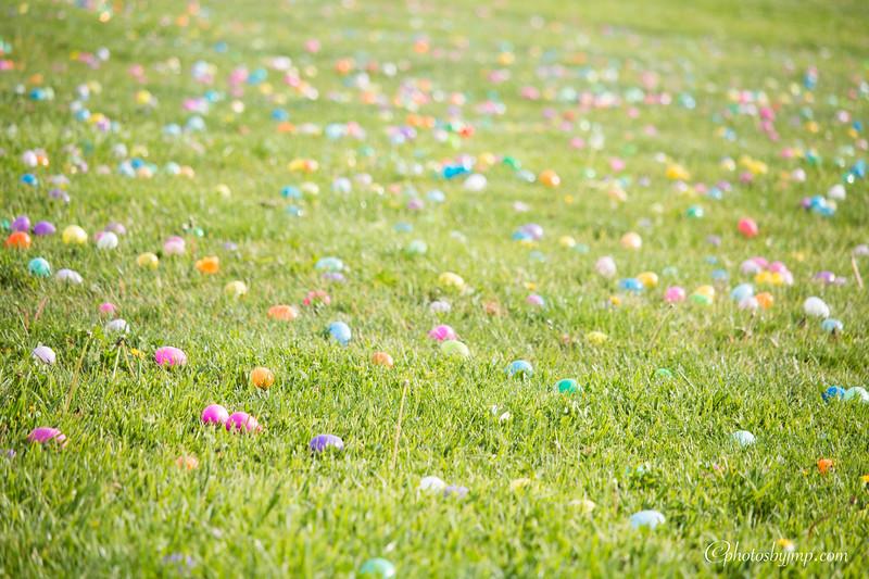 Community Easter Egg Hunt Montague Park Santa Clara_20180331_0009.jpg