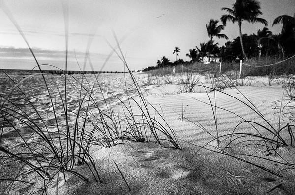 Beach in Black & White